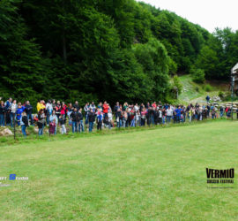 VSF-2015-Prejunior-Junior-19-6-15