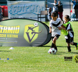 VSF-2015-Prejunior-Junior-19-6-17