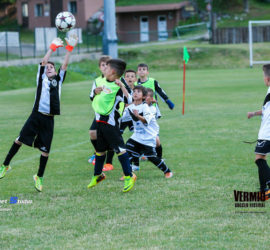 VSF-2015-Prejunior-Junior-19-6-8